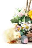 De Kuikens van Pasen stock fotografie