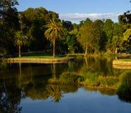 De kungliga botaniska trädgårdarna i Melbourne Royaltyfri Fotografi