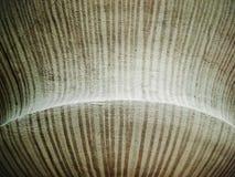 De kunst van Abstact van Bruine lijnen Royalty-vrije Stock Afbeelding