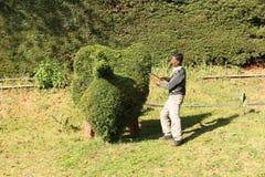 De kunst van topiary stock foto