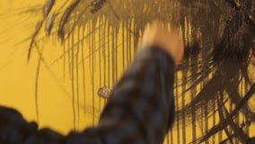 De kunstenaar schildert het abstracte ornament met zwarte borstel op gele muur stock video