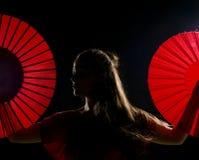 De kunstenaar van het flamenco royalty-vrije stock afbeeldingen