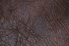 De kunstmatige oppervlakte van de huid Stock Foto's
