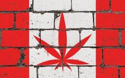 De kunstnevel die van de graffitistraat op stencil trekken Cannabisblad op bakstenen muur met vlag Canada stock illustratie