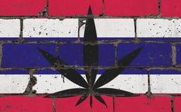 De kunstnevel die van de graffitistraat op stencil trekken Cannabisblad op bakstenen muur met vlag Thailand royalty-vrije illustratie