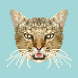 De kunstvector van het katten hoofdpixel geïsoleerd vierkant dier Royalty-vrije Stock Foto's