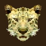 De kunstvector van het tijger hoofdpixel vierkant dier Geïsoleerde Royalty-vrije Stock Afbeeldingen