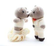 De kus van de bruid en van de bruidegom Royalty-vrije Stock Fotografie