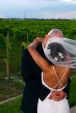 De Kus van het huwelijk Royalty-vrije Stock Foto