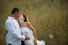 De kus van het huwelijk (bruid en bruidegomliefde) Stock Fotografie