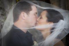 De kus van het huwelijk onder sluier Royalty-vrije Stock Afbeeldingen