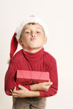 De kus van Kerstmis Stock Foto's