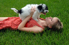 De kussen van het puppy Stock Foto's