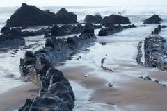 In de kust Stock Afbeelding