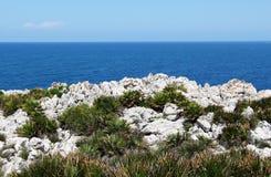 De kust dichtbij Palermo, met dwergpalmen Royalty-vrije Stock Afbeeldingen