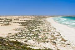 De kust Duinen van het Zand royalty-vrije stock afbeeldingen