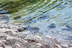 De kust in Kroatië Stock Foto's