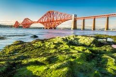De kust at low tide dichtbij Firth van vooruit overbrugt stock fotografie