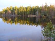 De kust van de Angara-rivier Siberië stock foto's