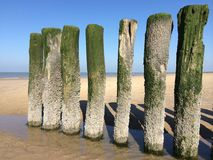 de kust van België Royalty-vrije Stock Afbeeldingen