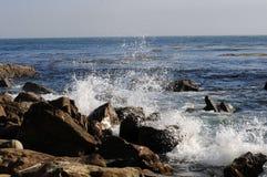 De kust van Californië royalty-vrije stock afbeelding