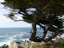 De kust van Carmel Royalty-vrije Stock Afbeeldingen