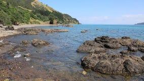 De kust van Coromandel stock video