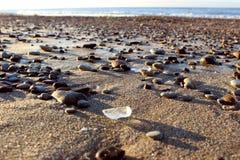 De kust van de Oostzee stock afbeeldingen