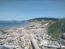 De kust van de Staat van Washington Royalty-vrije Stock Afbeelding