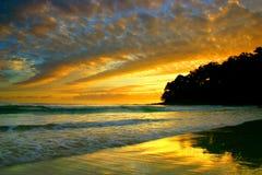De Kust van de zonneschijn, Australië royalty-vrije stock foto