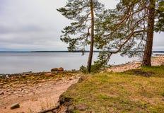 De kust van de Golf van Finland op een bewolkte de herfstdag Rotsen o Stock Afbeelding