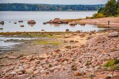 De kust van de Golf van Finland op een bewolkte de herfstdag Rotsen o Stock Afbeeldingen