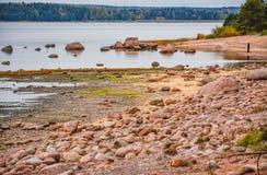 De kust van de Golf van Finland op een bewolkte de herfstdag Rotsen o Royalty-vrije Stock Afbeelding