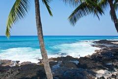 De kust van Hawaï Stock Afbeelding