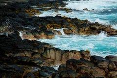 De kust van Hawaï Royalty-vrije Stock Fotografie