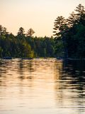 De Kust van het bergmeer, Forest Glowing bij Zonsondergang royalty-vrije stock fotografie