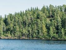 De kust van het eiland met hout wordt overwoekerd dat Stock Afbeelding