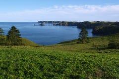 De kust van het eiland van Shikotan stock foto