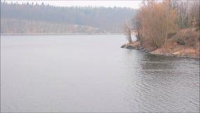 De kust van het meer stock video