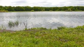 De kust van het meer stock videobeelden