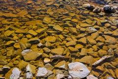 De kust van het meer Stock Foto's