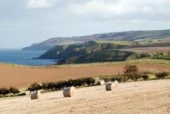 De kust van het oosten van Schotland Stock Afbeelding