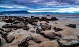 De kust van IJsland Royalty-vrije Stock Afbeelding