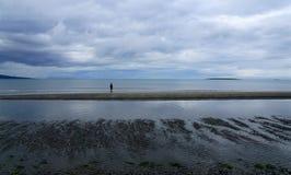 De kust van de noordelijke baai in de zomer stock foto