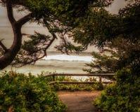De kust van Oregon Royalty-vrije Stock Fotografie