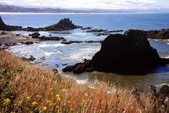 De Kust van Oregon - Nieuwpoort Stock Foto