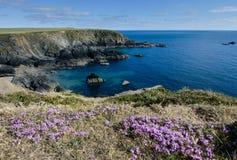 De Kust van Pembrokeshire Stock Afbeelding