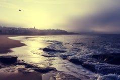De kust van Portugal Stock Fotografie