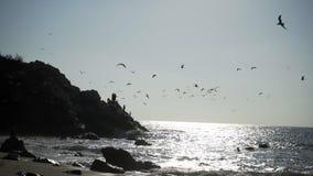 De kust van Puertoescondido stock video