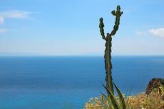De kust van zuidelijk Italië - Overzeese Mening royalty-vrije stock afbeeldingen